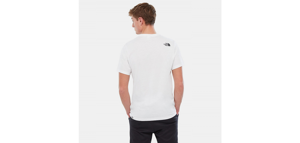 the north face nse tee (nf0a2tx4la9)