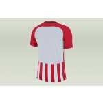 nike striped division jersey iii (894081-658)