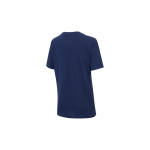 koszulka nike paris saint-germain tee evergreen crest junior (aq7859-410)