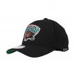 mitchell & ness team logo snapback grizzlies  (intl537-vangri-blk)