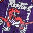 mitchell & ness nba swingman jerseys toronto raptors - tracy mcgrady #1  (smjygs18215-trapurp9)