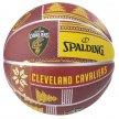 spalding nba team cleveland cavaliers (7) (29321836549)