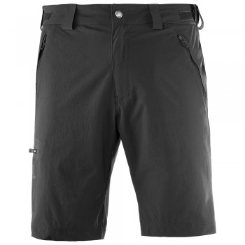 szorty salomon wayfarer short  m
